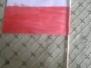 Święto flagi klasa 1a